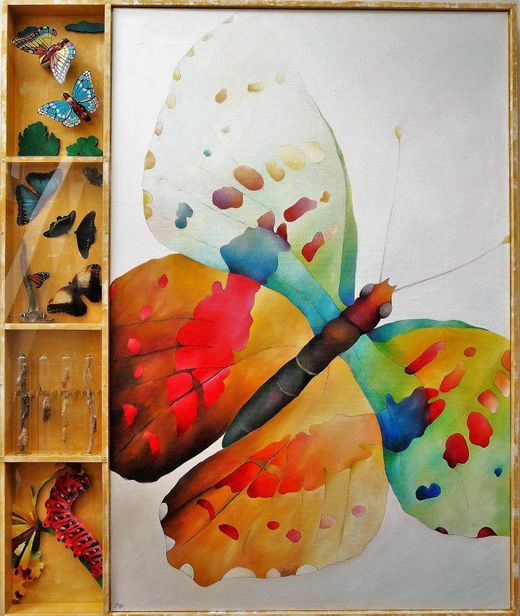 Vlinder Max (2)